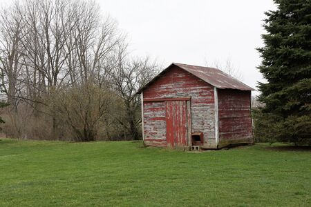 Barnwood shed