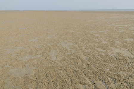 clear day: The tidal flat in the ebb tide time on clear day Stock Photo