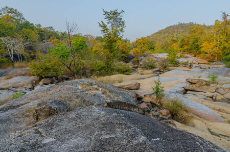 evergreen forest: Dry evergreen forest and geography in Tak Thailand