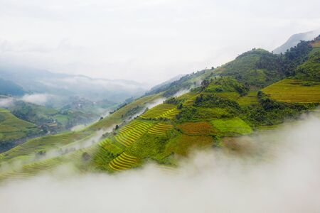 Paddy rice terraces, agricultural fields in countryside or rural area of Mu Cang Chai, Yen Bai, mountain hills valley on summer in South East Asia, Vietnam. Nature landscape background.