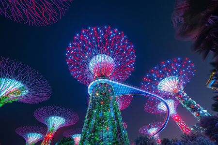 Super tree Grove. Garden by the bay or outdoor artificial trees in Marina Bay area in urban city of Singapore Downtown at night. Landscape background