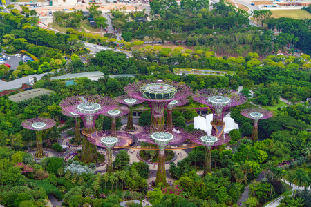 Aerial view of Supertree Grove. Garden by the bay in Marina Bay area in urban city of Singapore Downtown at noon. Landscape background