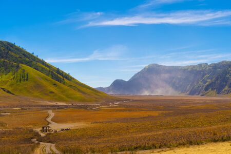 Yellow field with mountains. Bromo Savanna Green Hill in the national park on travel trip and holidays vacation concept, East Java, Indonesia. Nature landscape background