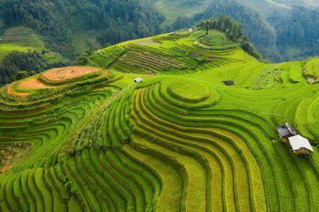 Luftaufnahme von Reisterrassen, grünen landwirtschaftlichen Feldern in der Landschaft oder ländlichen Gegend von Mu Cang Chai, Yen Bai, Berghügeltal bei Sonnenuntergang in Asien, Vietnam. Naturlandschaftshintergrund.
