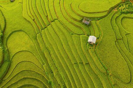 Bovenaanzicht vanuit de lucht van rijstterrassen, groene landbouwvelden op het platteland of landelijk gebied van Mu Cang Chai, Yen Bai, bergheuvelsvallei bij zonsondergang in Azië, Vietnam. Natuur landschap achtergrond.