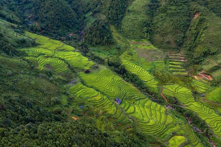 Aerial top view of Fansipan mountains with paddy rice terraces, green agricultural fields in countryside or rural area, hills valley at sunset in Asia, Sapa, Vietnam. Nature landscape background.