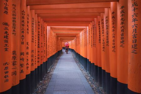 An Asian woman wearing Japanese traditional kimono standing in Fushimi Inari Taisha during travel holidays vacation trip outdoors in Kyoto, Japan. Red poles in the temple. Walkway tunnel of shrine.