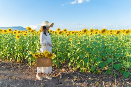 Portrait of happy Asian woman enjoying and relaxing in a full bloom sunflower field during travel holidays vacation trip outdoors at natural garden park at noon in Lopburi, Thailand. Lifestyle. Standard-Bild