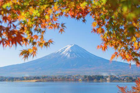 Góra Fuji z czerwonymi liśćmi klonu lub jesiennymi liśćmi w kolorowej jesieni w pobliżu Fujikawaguchiko, Yamanashi. Pięć jezior. Drzewa w Japonii z niebieskim niebem. Tło krajobrazu przyrody