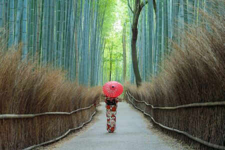 An Asian woman wearing Japanese traditional kimono standing in Bamboo Forest during travel holidays vacation trip outdoors in Kyoto, Japan. Tall trees in natural park. Nature landscape background.
