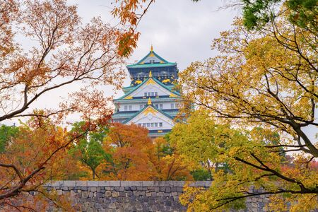 Osaka Castle building with colorful maple leaves or fall foliage in autumn season. Colorful trees, Kyoto City, Kansai, Japan. Architecture landscape background. Famous tourist attraction. Reklamní fotografie