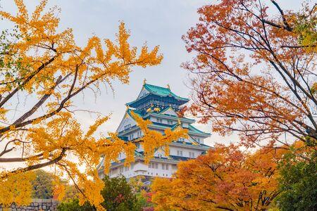 Edificio del castello di Osaka con foglie d'acero colorate o fogliame autunnale nella stagione autunnale. Alberi colorati, città di Kyoto, Kansai, Giappone. Priorità bassa del paesaggio di architettura. Famosa attrazione turistica.