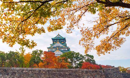 Edificio del castillo de Osaka con coloridas hojas de arce o follaje de otoño en la temporada de otoño. Árboles coloridos, la ciudad de Kyoto, Kansai, Japón. Fondo de paisaje de arquitectura. Atracción turística famosa. Foto de archivo