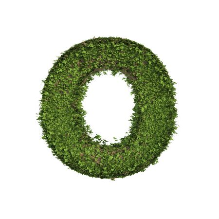 Ivy plant with leaves, green creeper bush and vines forming letter O, English alphabet text font character isolated on white in nature, growth and eco environment concept. 3d tree illustration. Banco de Imagens