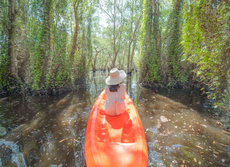 Asian woman, a tourist, paddling a boat, canoe or kayak with trees in Rayong Botanical Garden, Paper Bark Tropical Forest in national park in Thailand. People lifestyle adventure activity recreation. Banque d'images