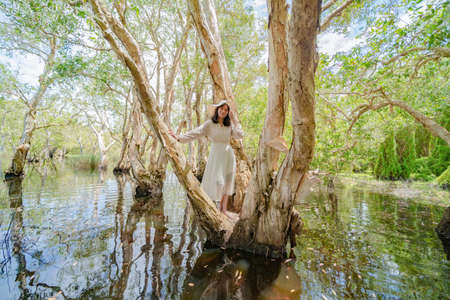 Portrait of Asian woman, a tourist, with trees in Rayong Botanical Garden, Paper Bark Tropical Forest in national park in Thailand. People lifestyle adventure activity recreation. Banque d'images