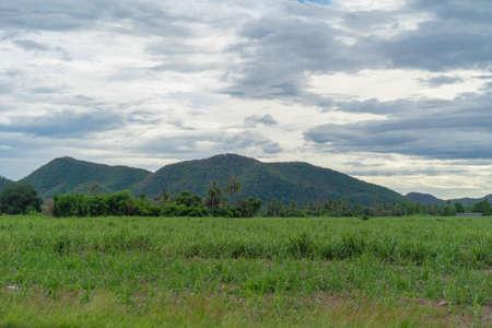 Green Mountain hill. Nature landscape background in Phetchabun, Thailand. Banco de Imagens - 157811729