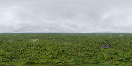 360 panorama by 180 degrees angle seamless panorama of aerial view of coconut or palm trees. Nature landscape forest background in agriculture farm concept, Ratchaburi, Thailand. Food crops.