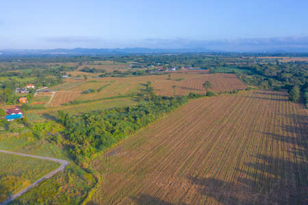 Aerial top view of grass and crops field with green mountain hill in agriculture concept. Nature landscape background in Thailand. Banco de Imagens - 161306689