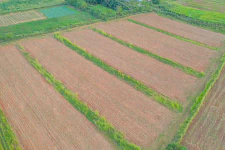 Aerial top view of grass and crops field with green mountain hill in agriculture concept. Nature landscape background in Thailand.