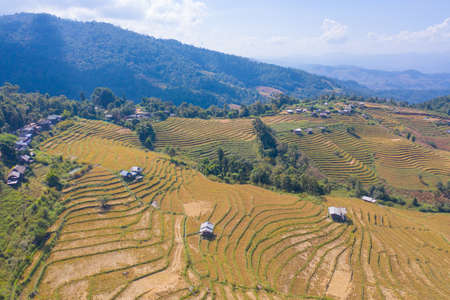 Aerial top view of dry paddy rice terraces, green agricultural fields in countryside, mountain hills valley in Asia, Pabongpieng, Chiang Mai, Thailand. Nature landscape. Crops harvest. drought