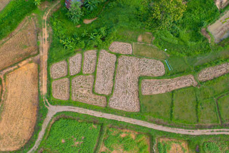 Aerial top view of dry grass, rice and crops field with green mountain hill in agriculture concept. Nature landscape background in Thailand. Harvest. drought. Banco de Imagens