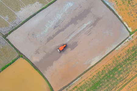 Aerial top view of tractor rice car working on water to grow rice paddy, crop field, harvesting agriculture manufacturer cultivation production. Nature environment landscape.Industry in farm Banco de Imagens