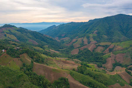 Aerial top view of forest trees and green mountain hill. Nature landscape background, Thailand. Banco de Imagens