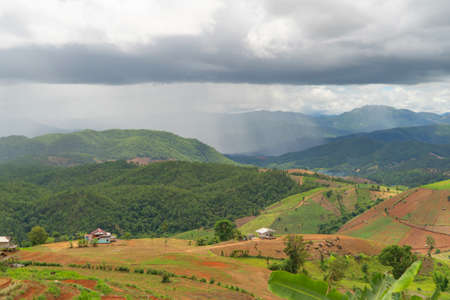Paddy rice terraces with water reflection and rain storm, green agricultural fields in countryside, mountain hills valley, Pabongpieng, Chiang Mai, Thailand. Nature landscape. Crops harvest.
