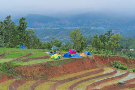 Camping tent with paddy rice terraces with water reflection, green agricultural fields in countryside, mountain hills valley, Pabongpieng, Chiang Mai, Thailand. Nature landscape. Crops harvest.