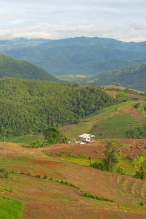 A little house in forest trees and green mountain hills. Nature landscape background, Thailand.