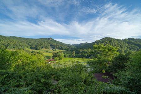 Forest trees and green mountain hills. Nature landscape background, Thailand.