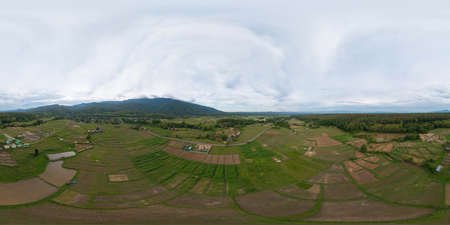 360 panorama by 180 degrees angle seamless panorama of aerial top view of dry grass, rice and crops field with green mountain hill in agriculture concept.Nature landscape in Thailand. Harvest. drought Banco de Imagens