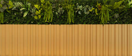 Natural wood slats wall or lath line arrange with tree. Flooring pattern surface texture. Close-up of interior architecture material for design decoration background. 写真素材