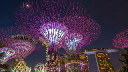 SINGAPORE, DECEMBER 23 2017 : Super-tree park is landmark Singapore at night. cityscape is colorful show to lighting at Marina Bay Sand.