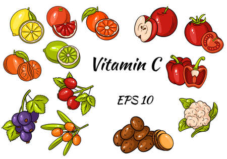 Set of fruits and vegetables and berries. Vitamin C. Healthy food. Great collection. Illustrations in cartoon style for design and decoration. Vetores