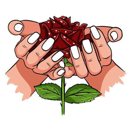 Red rose in female hands. Romantic. Vector illustration. Isolated drawing on a white background.