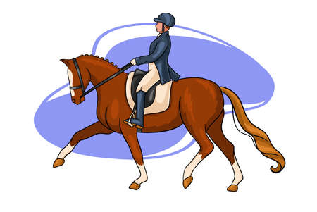 Horseback riding. Dressage. Woman riding a horse. The horse performs the dressage element.
