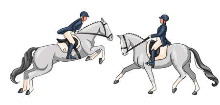 Horseback riding. Dressage and show jumping. Set. A woman riding a horse performs a dressage element and jumps over an obstacle.