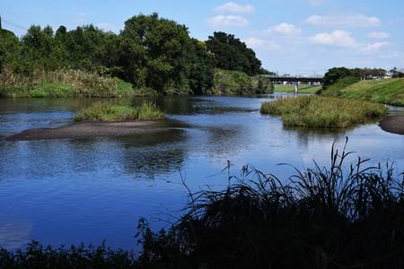 日本: 川の風景