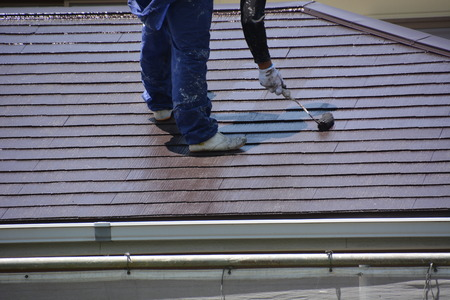 Painting house walls and roof