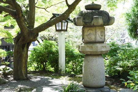 Scenery of the precincts of Japanese shrine 写真素材