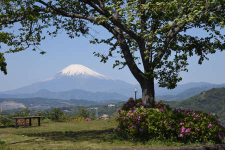 Mt. Fuji in late spring covered with snow.