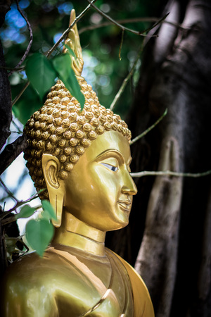 Buddha in Thai temple Stock Photo
