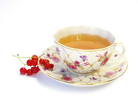Red currant and herbal tea in a cup photo