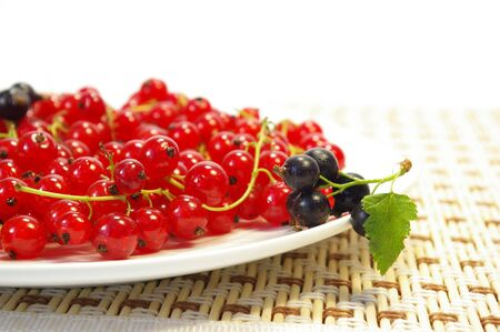 Red and black currant on a white plate photo