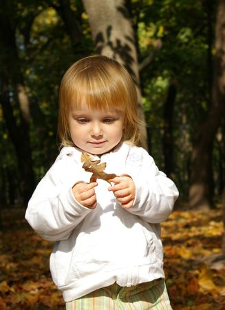 Babie: Autumn portrait of cute little girl with oak leaf