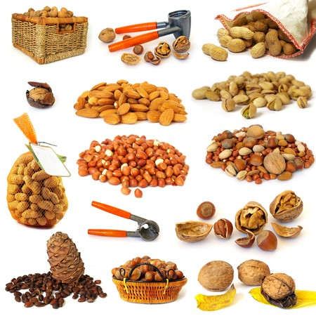 Nuts collection isolated on a white background photo