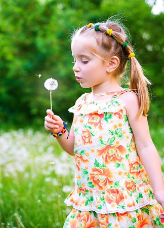 Cute little girl  on the meadow photo