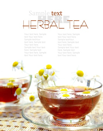 Cups of tea and chamomile blossoms Stock Photo - 11023852